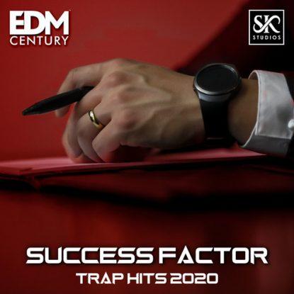 19-Success-factor